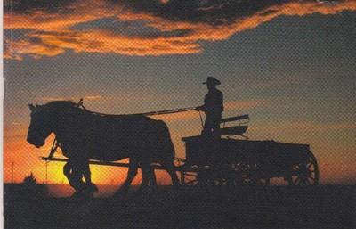 wagonsunset