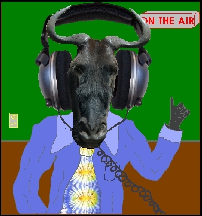 gnu on the air